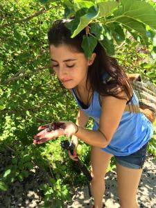 Margaret Atayants eating mulberries.